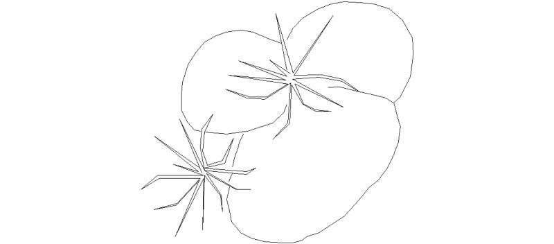 arbusto02.jpg