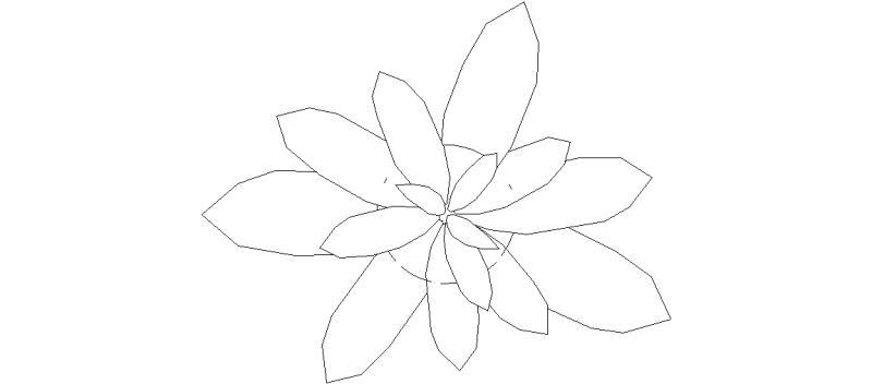 plantas03.jpg