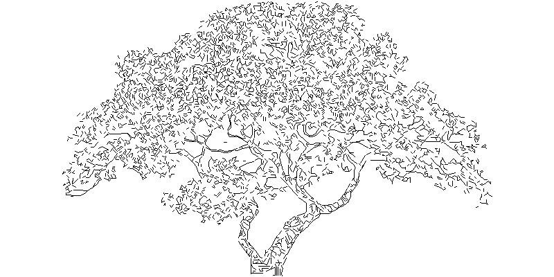 árbol en alzado 2D
